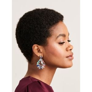 Stella and Dot Mix it Up Earrings